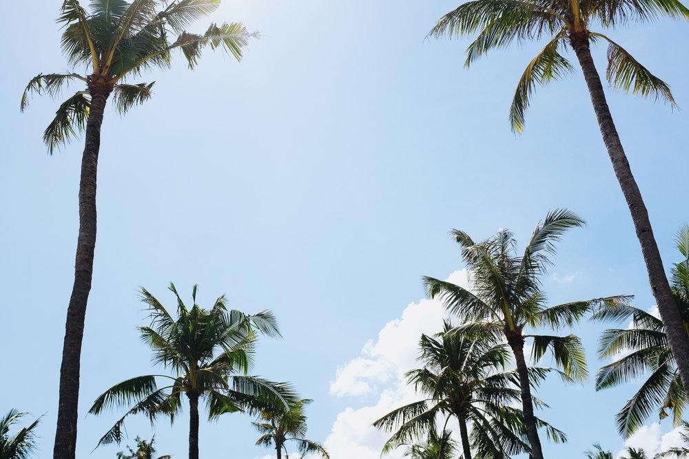 Bali-247.jpg