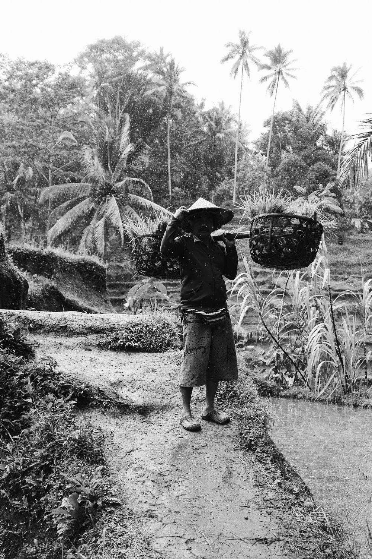 Bali-108.jpg