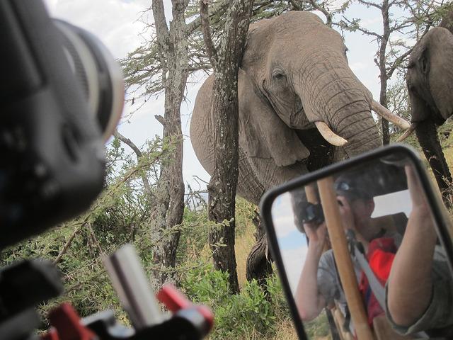 KenyaSafariFilm.jpg