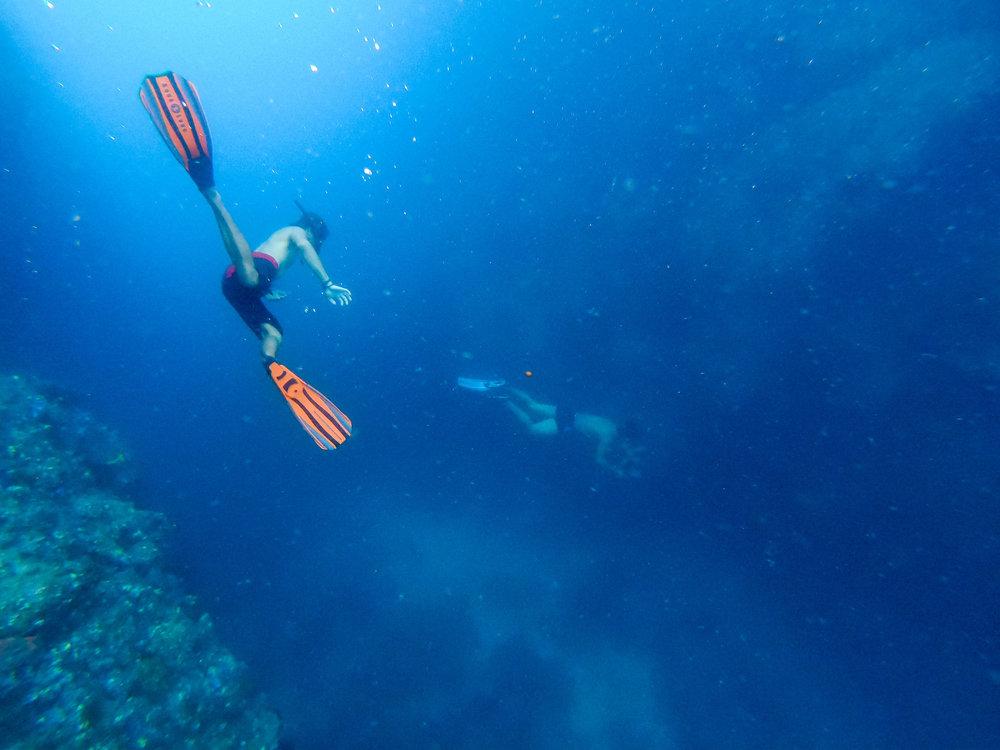 Raja Ampat Diving | Indonesia Travel