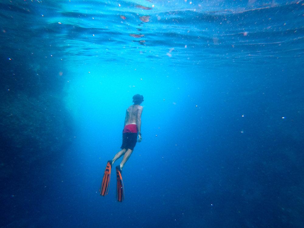 RajaAmpatSnorkeling4(1).jpg