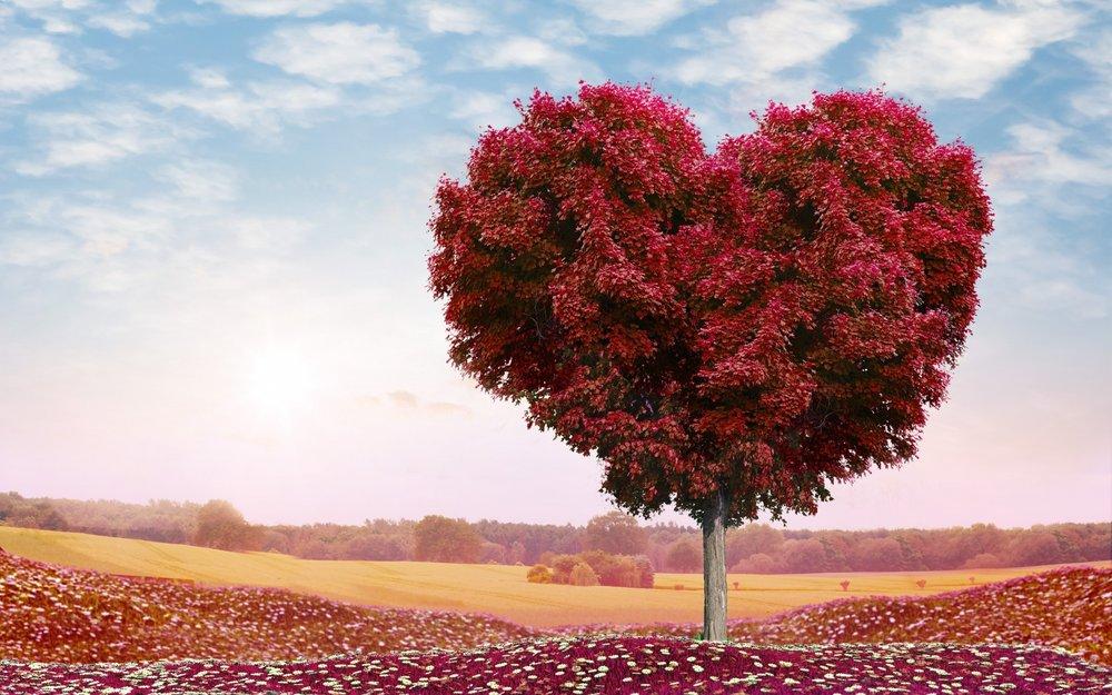 arbol corazones 4.jpg