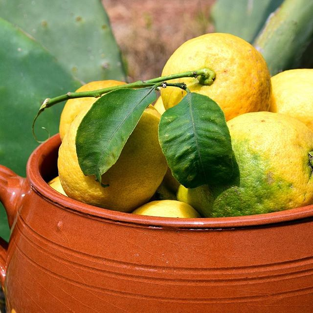 Add a bowl of lemons to your kitchen. They are great for drinks, great for cooking and great for cleaning. #cleanwithfood #lemons
