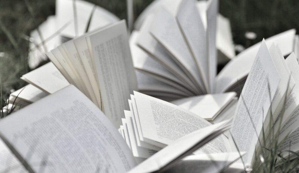 Books grass.jpg