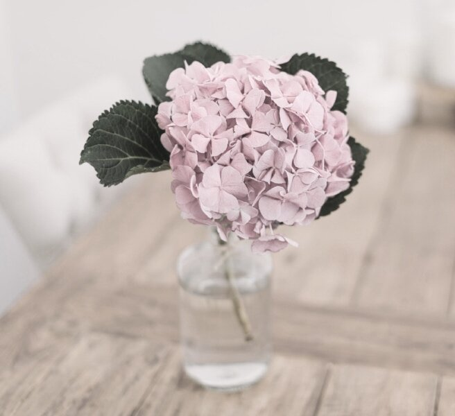 vase flower pink.jpg