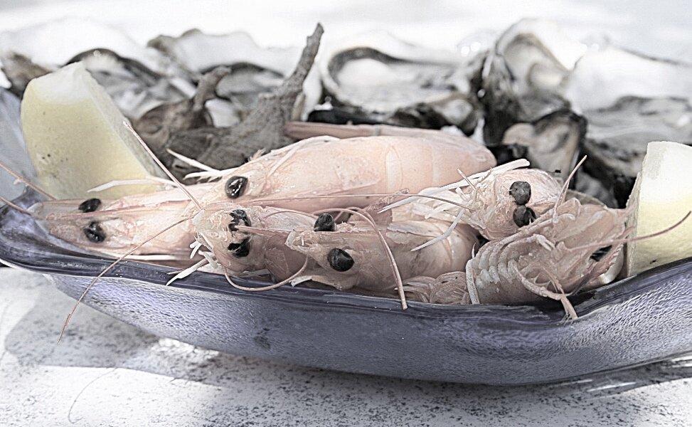 seafood prawns plate blue.jpg