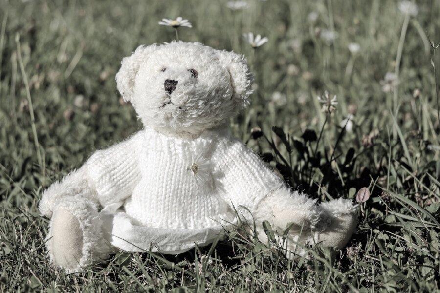 teddy bear grass.jpg