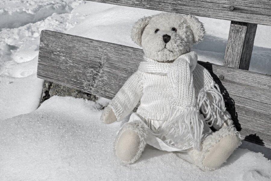 teddy bear snow chair.jpg