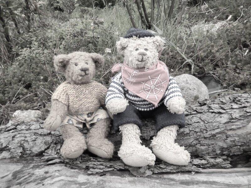 Teddy bear river log.jpg