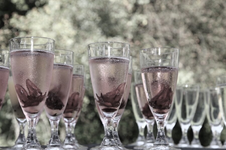 champagne-glass-624450_1920.jpg