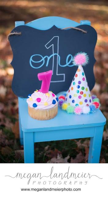 Astonishing Happy Birthday Arlington Va First Birthday Session Megan Funny Birthday Cards Online Overcheapnameinfo