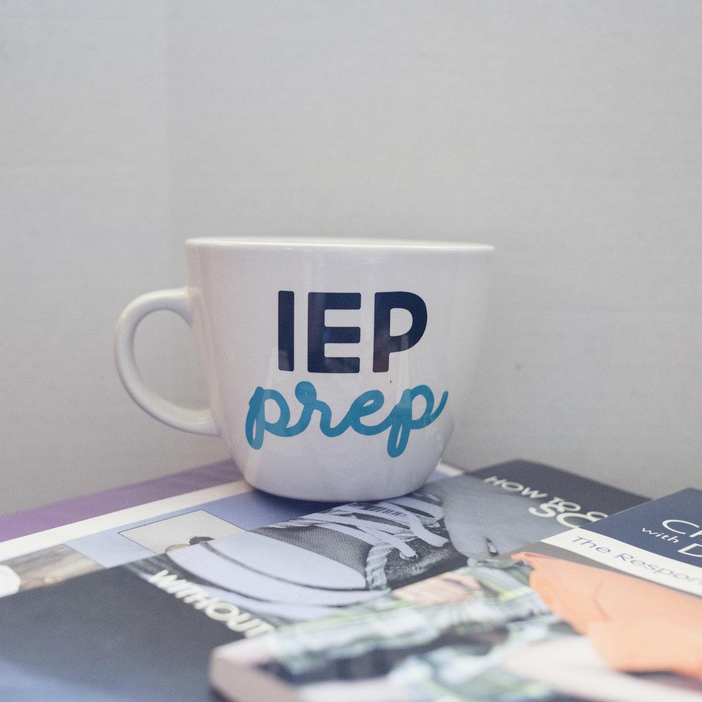IEPmugonbook.jpg