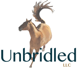 unbridled-horse-therapy-living-high-vibe-video