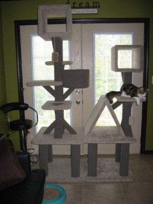 Custom cat trees made for PipandPaws