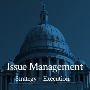 Issue Management: Strategy + Execution