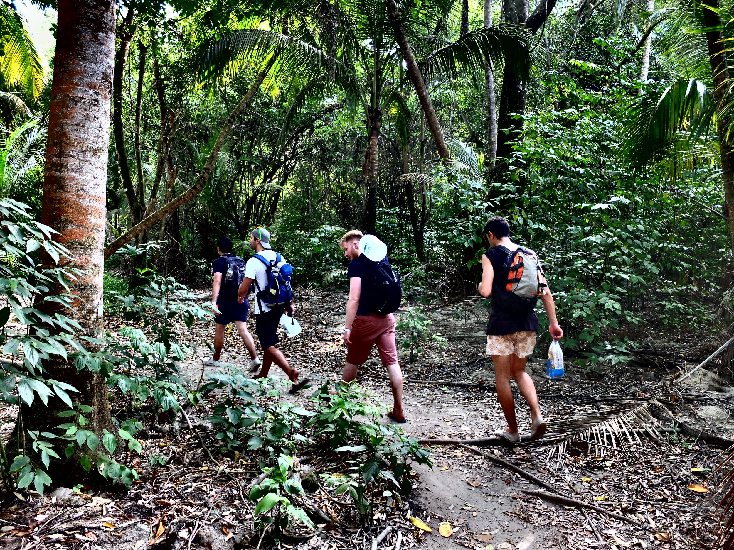 The crew trekking through the jungle