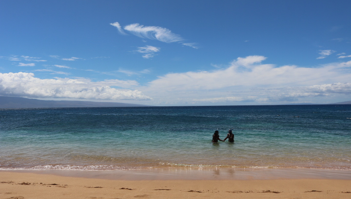 Lovebirds holding hangs at Kā'anapali Beach