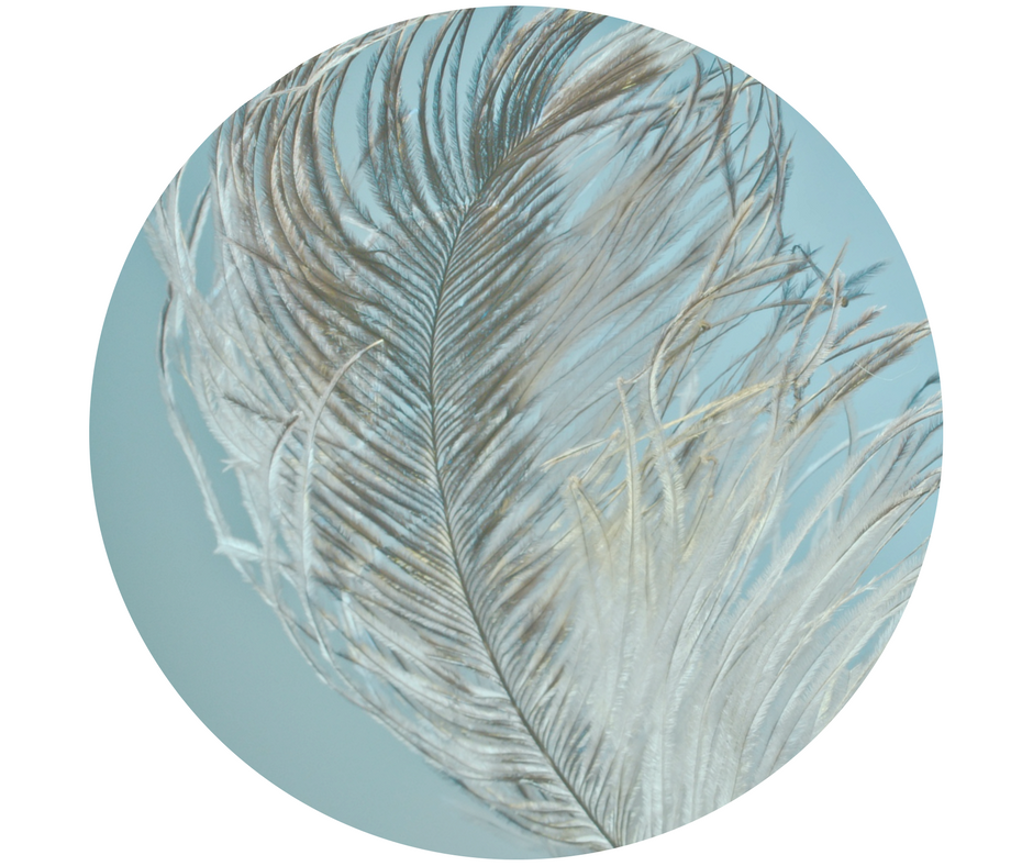 - A great way to check out Nest Feathers and you make some headway on problem areas.