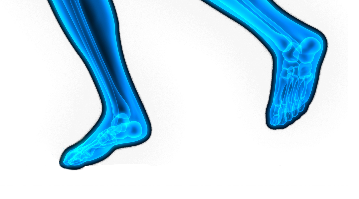 The Foot and Ankle Association Inc.