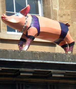 pig-in-stockings.jpg