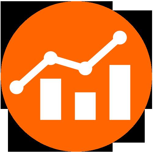 Data Analyst -