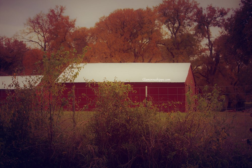 red barn with gh brand.jpg