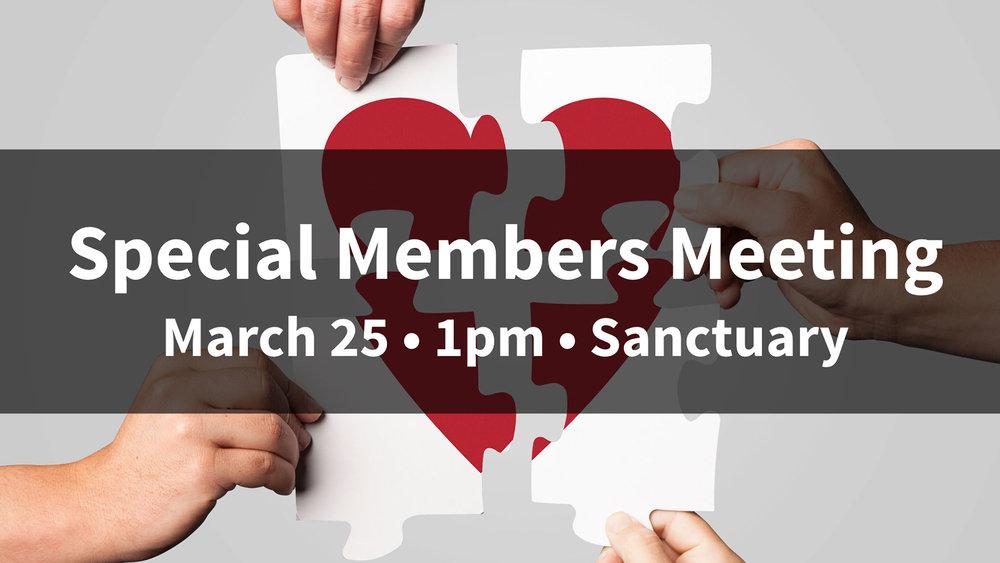 Special Members' Meeting 3.25.jpg