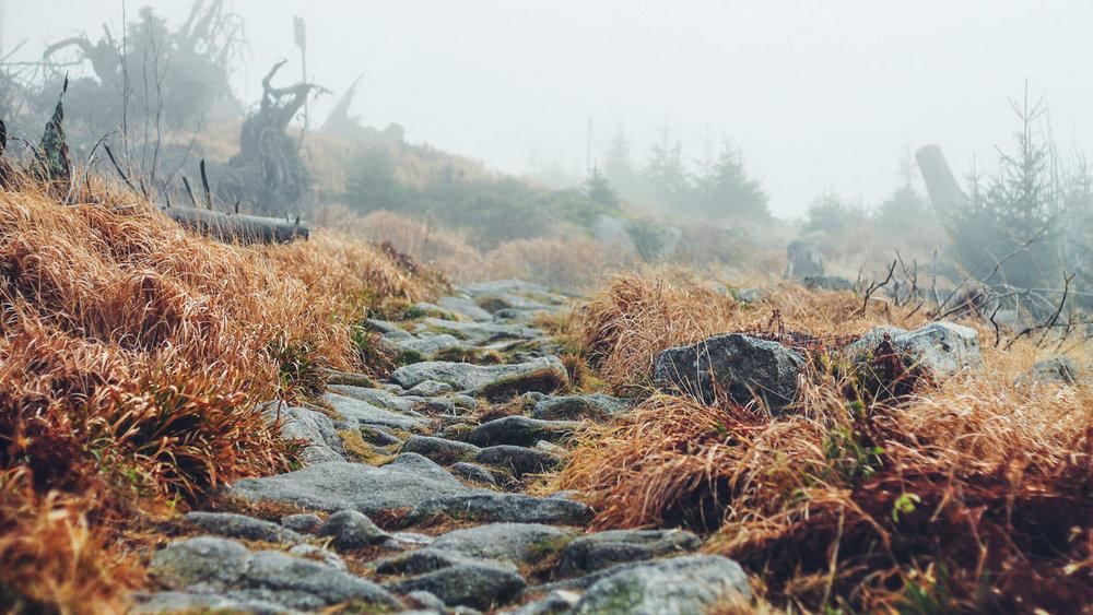 Faith Path:  Growth Milestones