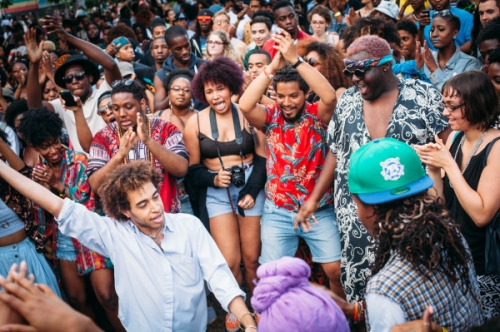 Afropunk crowd.jpg