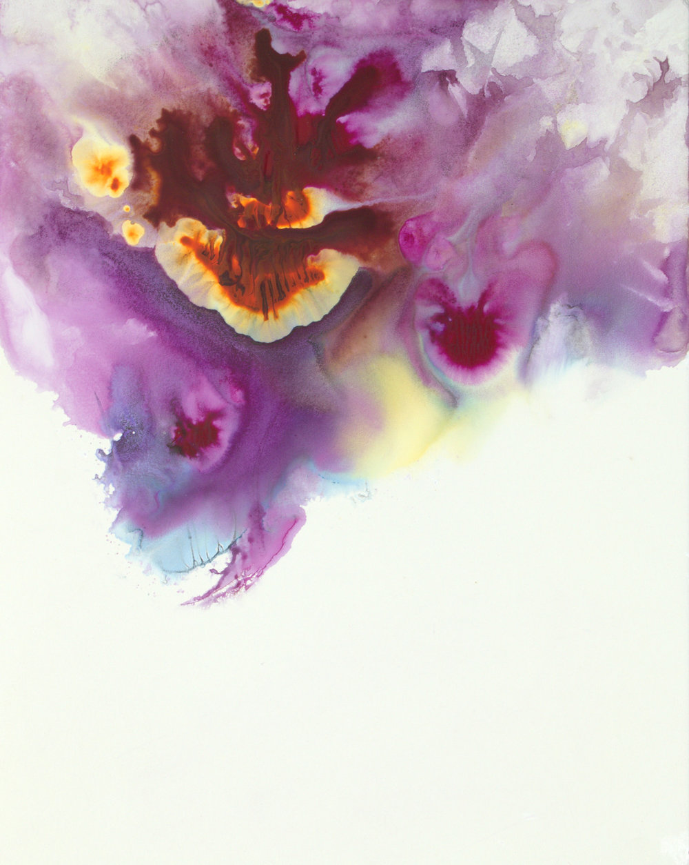 Purple Pansy Petals I - 14x11