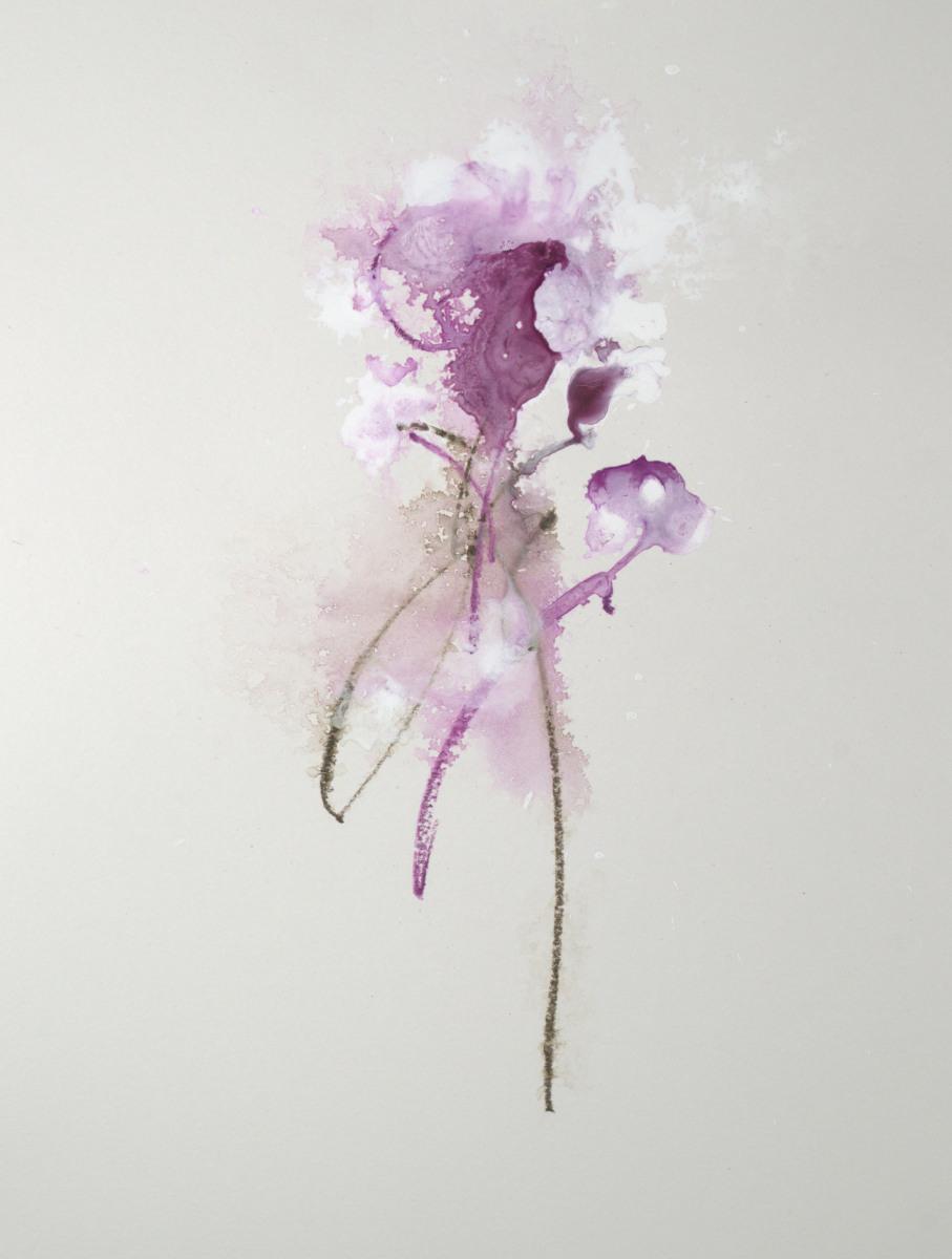 Purple Organic Floral I - 14x11