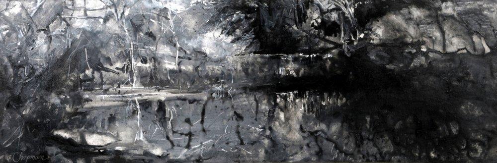 Homage to Blue Heron Nature Preserve - 15x45