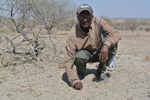 Alemayehu Asfaw.jpg