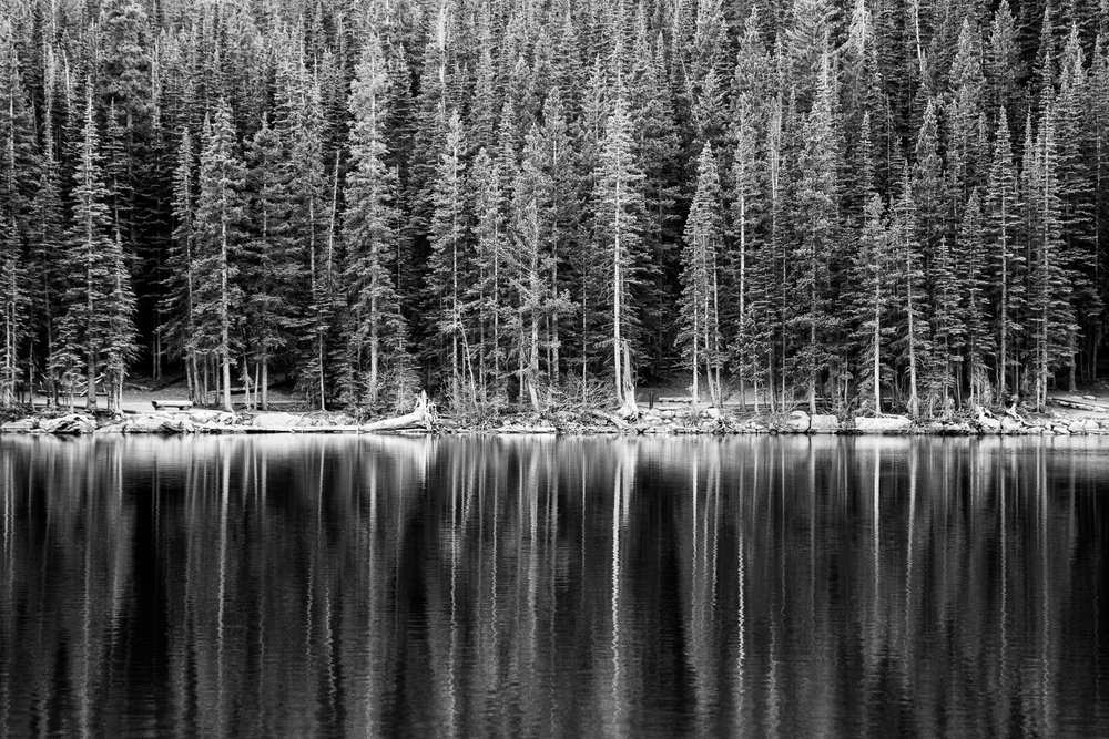 Wes_Ryan_Photography-rmnp_3084.jpg