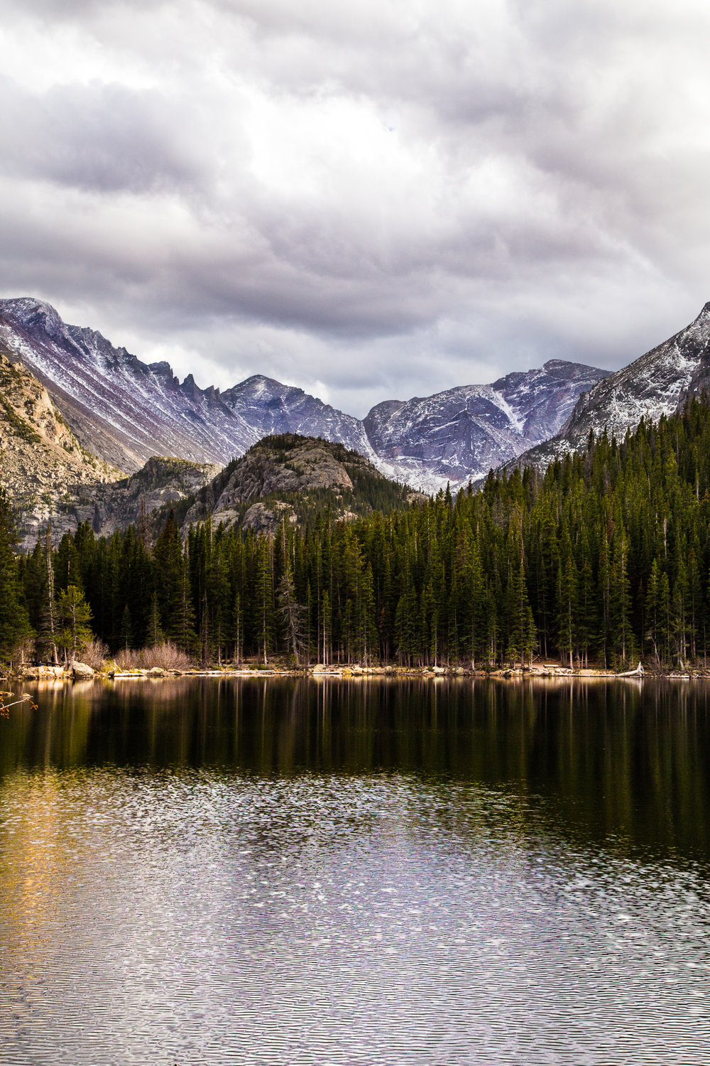Wes_Ryan_Photography-rmnp_3089.jpg
