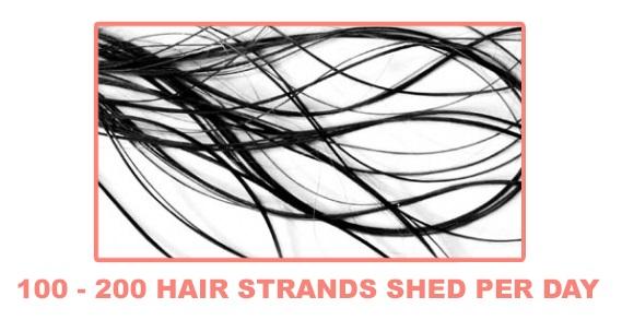 strands-1.jpg