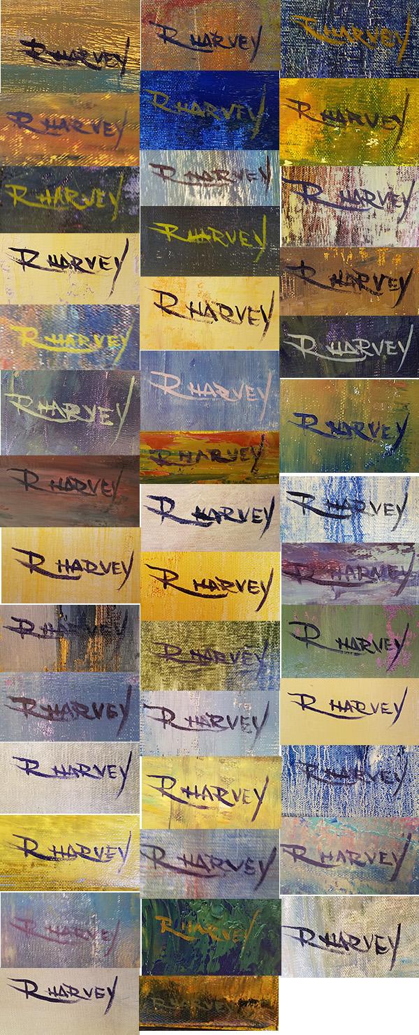 rachel harvey signature montage