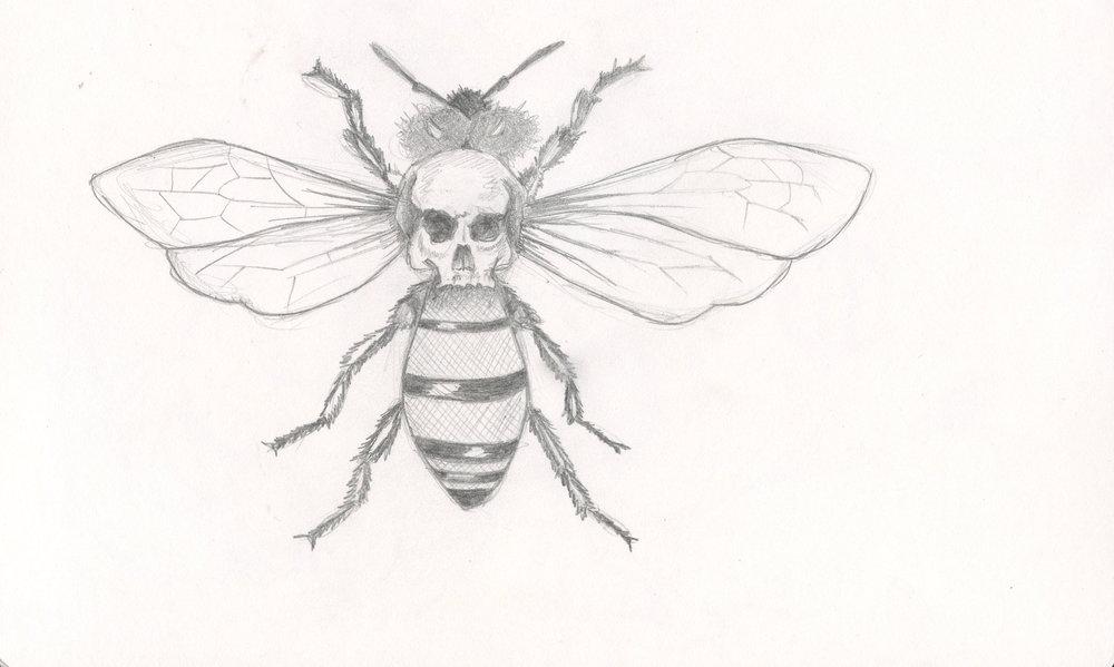 Honeybee Study
