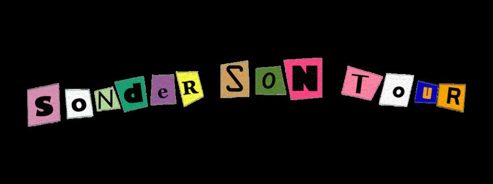 sonder-son-text-transparent.png