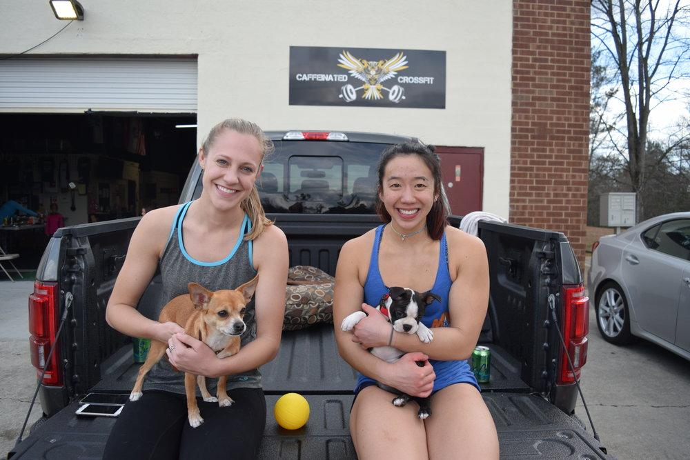 Pups in a Truck