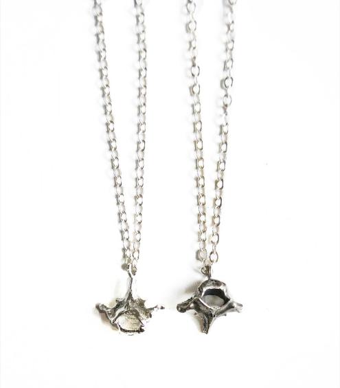 Armadillo Vertebrae necklace by Birds N Bones