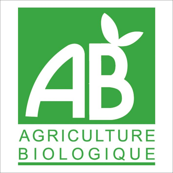 AB logo Web.jpeg