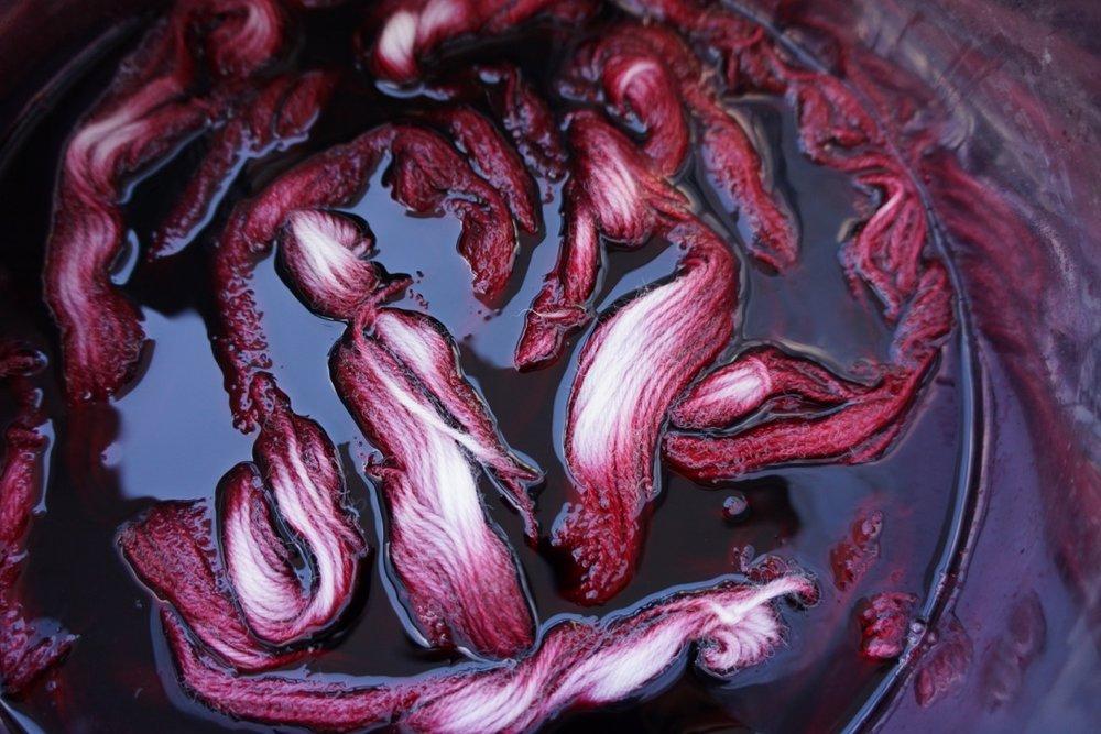 Hibiscus dye bath.