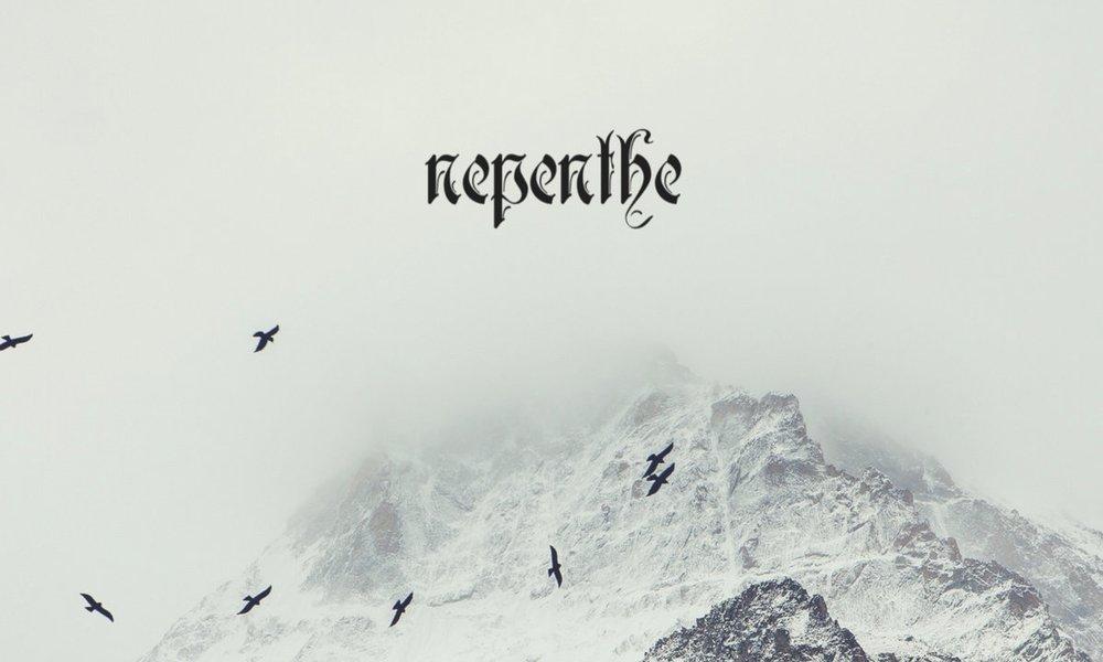 Nepenthe -