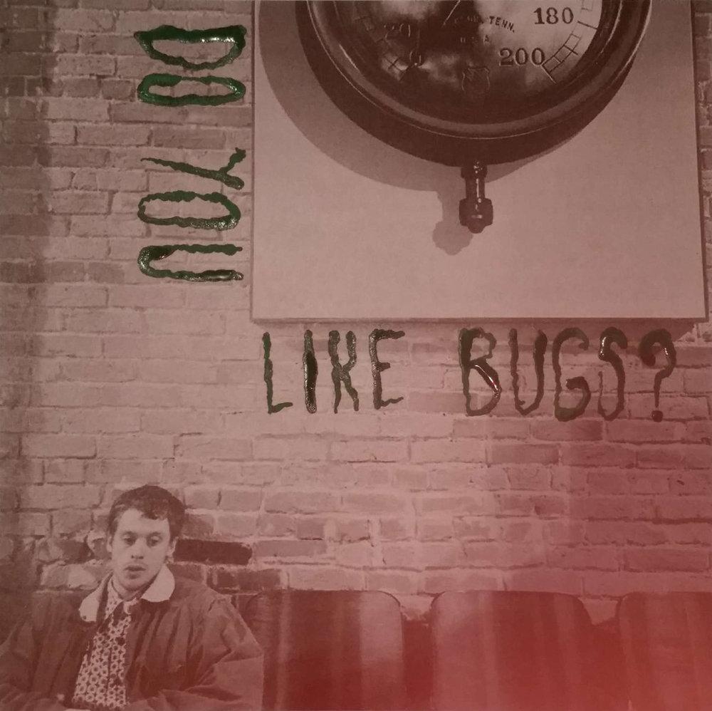 Do You Like Bugs.jpg