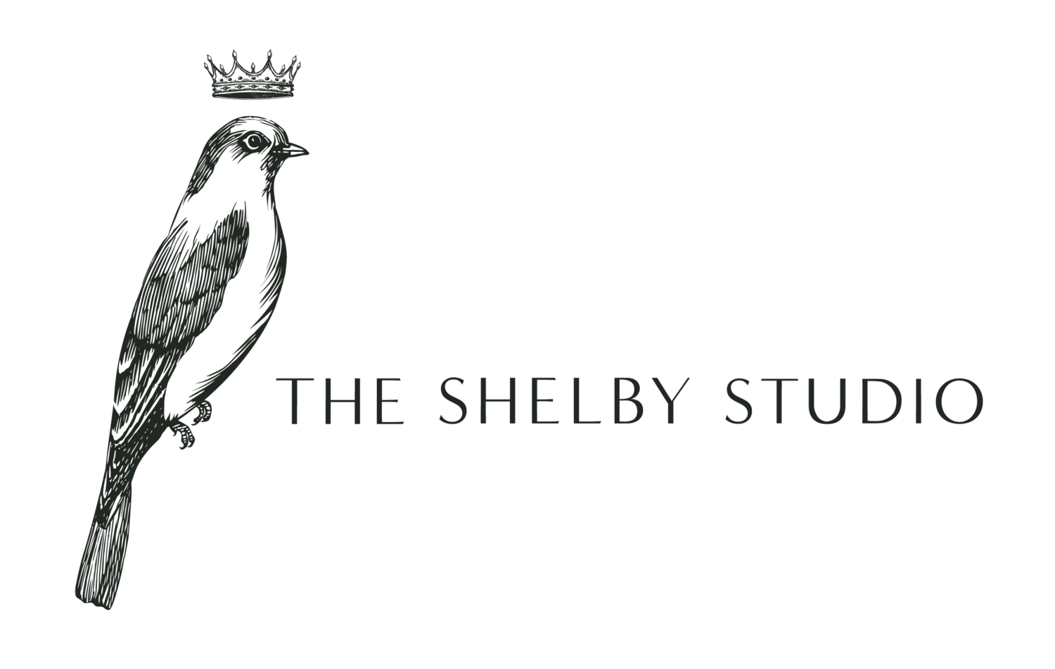 The Shelby Studio