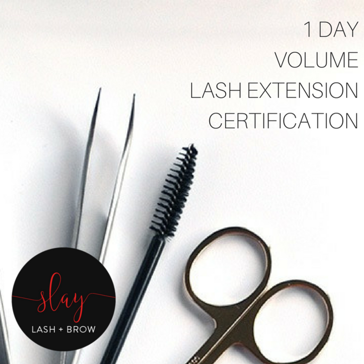 1 Day Volume Lash Extension Certification: Group Learning $950 ...