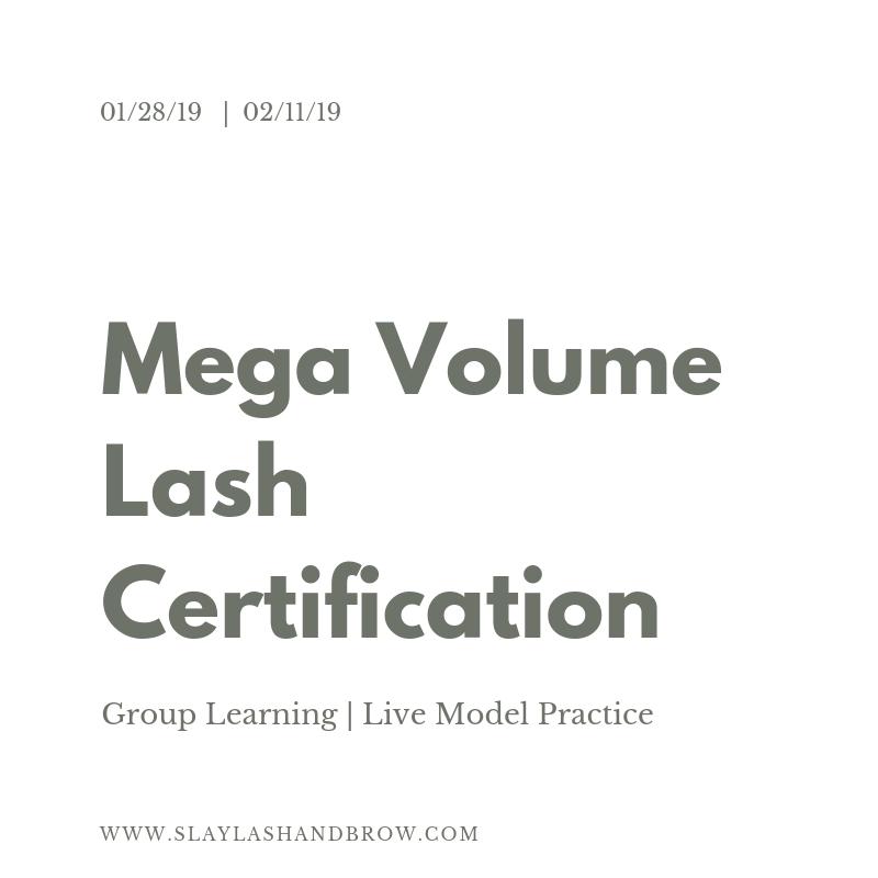 SLB MGA Volume Lash Training 2019.png
