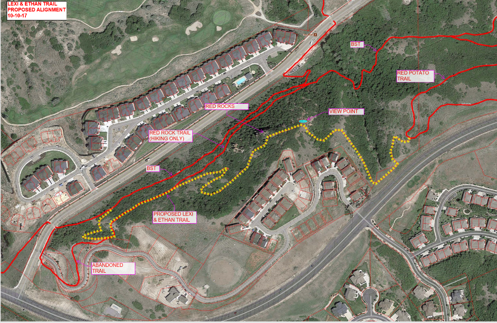 Arial view of the trail layout ( In yellow)