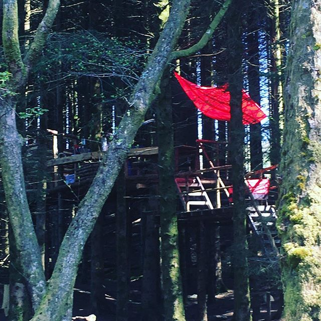 Clear the decks at #redkitetreetent #redkitebarn @chilldernessretreats @chillderness_dreambuilder @redkitebarnwales #glamping #canoing #bunting #harryandmeghan #honeymoon #wedding #vows #romance #fun